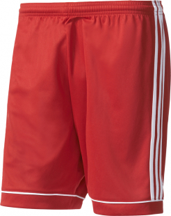 Adidas Squadra 17 Shorts power red-weiß