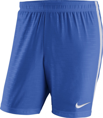 Nike Venom Woven Kinder Shorts royal blue-weiß