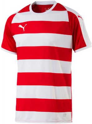 Puma Liga Hooped Trikot puma red-puma white