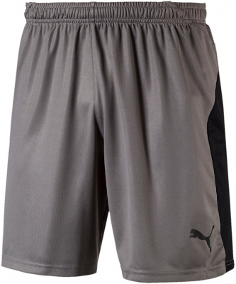 Puma Liga Herren Shorts steel gray-puma black