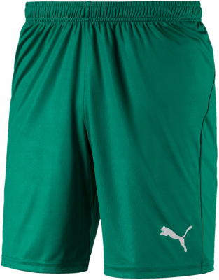 Puma Liga Core Shorts pepper green-puma white